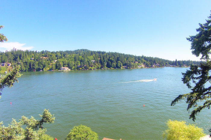 Aerial View of Lake Oswego
